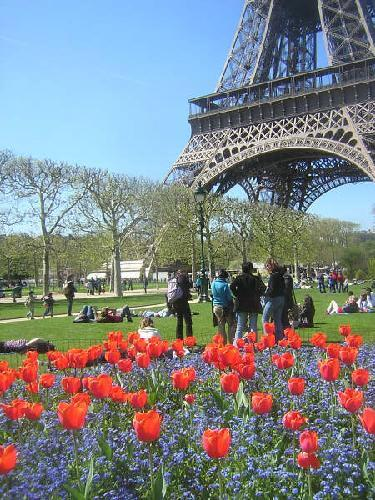 2077543 Spring In Paris Paris