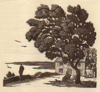 547 Bird In The Tree