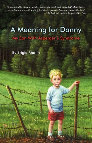 A Meaning for Danny - Book Cover