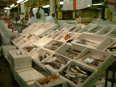 FIsh Stalls at Billingsgate Market